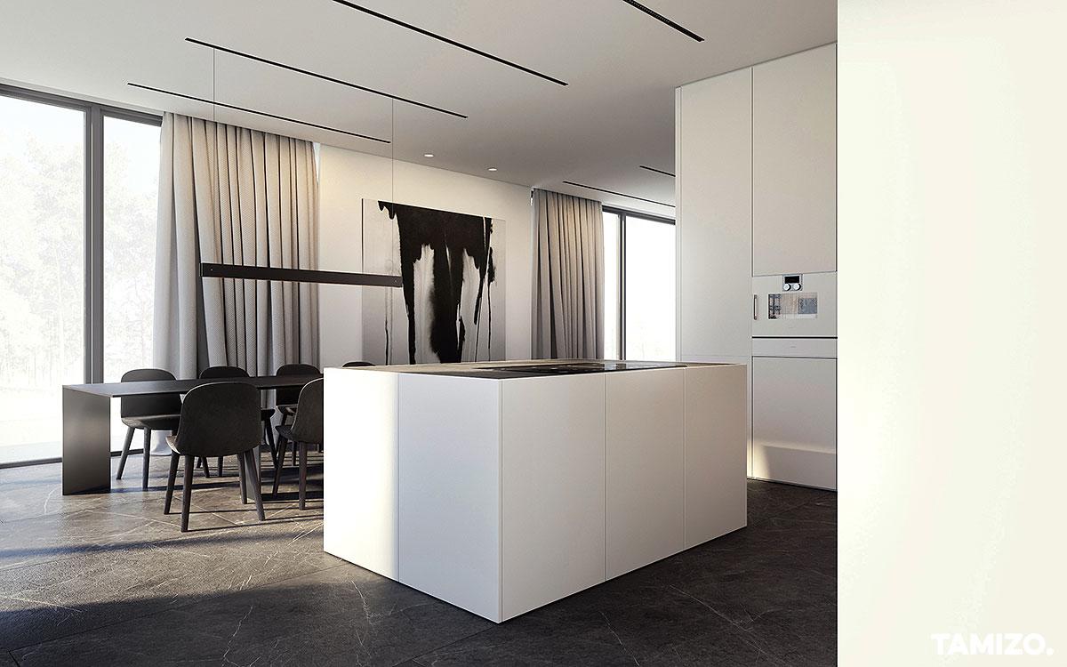 I070_tamizo_architekci_projekt-wnetrza-domu-jednorodzinnego-warszawa-drewno-czern-biel-minimalizm-01
